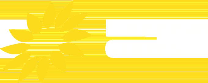 Europäische GRÜNE